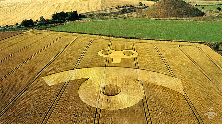campi di grano imagine